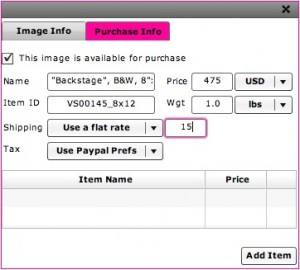 Purchase Info window for setting PayPal pricing